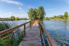 Wooden Footbridge To Island Wi...