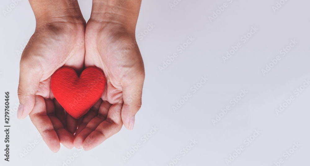 Fototapeta heart on hand for philanthropy / woman holding red heart in hands for valentines day or donate help give love warmth take care