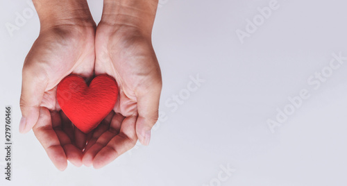 Fototapeta heart on hand for philanthropy / woman holding red heart in hands for valentines day or donate help give love warmth take care obraz na płótnie