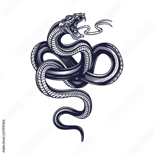 Obraz na plátně Snake