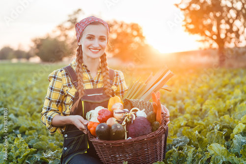 Photo Bäuerin verkauft gesundes und buntes Gemüse