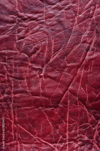 skóra wzór znak tapeta tło