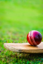 Red Cricket Ball On The Bat In...