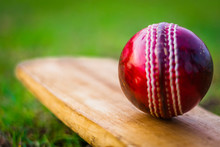 Red Cricket Ball On The Bat In Green Playground
