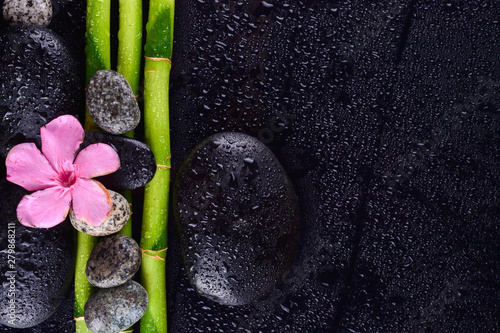 Poster Spa pink flower with black stones and bamboo grove on Wet black background. Spa Concept