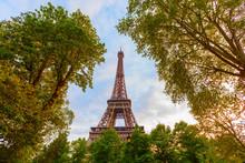 France, Paris, Eiffel Tower Framed By Trees