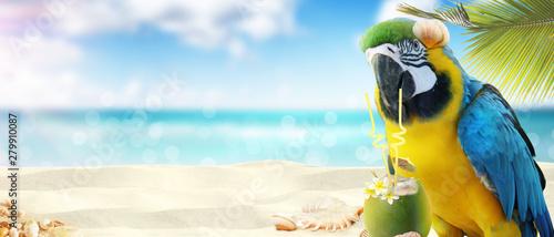 Foto auf AluDibond London Papagei mit Cocktail im Urlaub am Strand