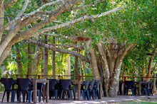 Outdoor Dining Deck At A Casual Bushland Restaurant