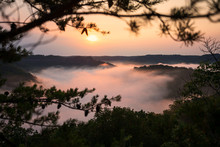Red River Gorge Kentucky Foggy...