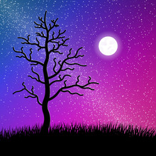 Night Starry Sky With Tree And...