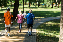 Back View Of Retired Multicultural Pensioners In Sportswear Walking In Walkway In Park
