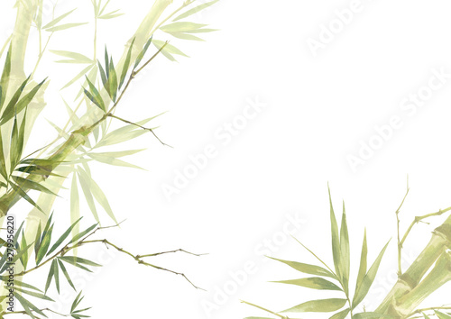 Fotografiet  Watercolor illustration painting of bamboo leaves , on white background