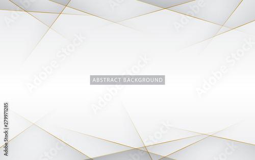 Pinturas sobre lienzo  Modern abstract light silver background vector