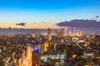 Cityscape in Tokyo, Japan