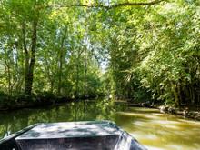 Marais Poitevin Autour De Saint-Hilaire-la-Palud. En Barque Le Long Du Canal De Forges. Paysage Verdoyant Sous Les Frènes Et Peupliers