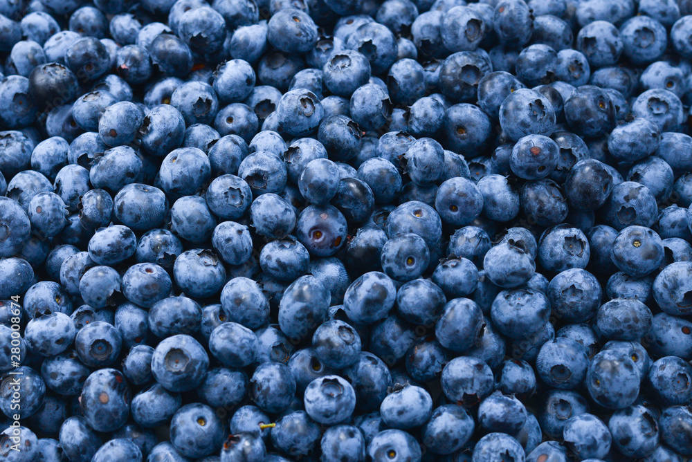 Fototapety, obrazy: Fresh blueberry background. Texture blueberry berries close up.