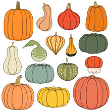 Set Of Color Illustrations With Pumpkins Of Different Shapes And Varieties. Isolated Objects On White Background.