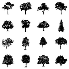 Bushy Trees Glyph Icons