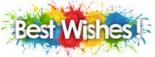 Best Wishes In Splash's Back...