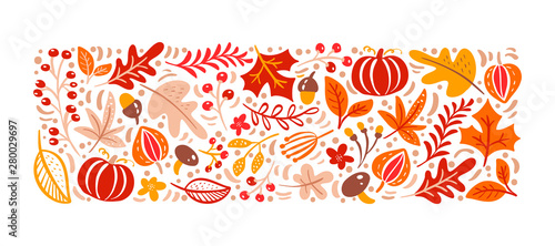 Fototapeta Vector autumn elements. Mushroom, acorn, maple leaves and pumpkin isolated on white background. Perfect for seasonal holidays, Thanksgiving Day obraz