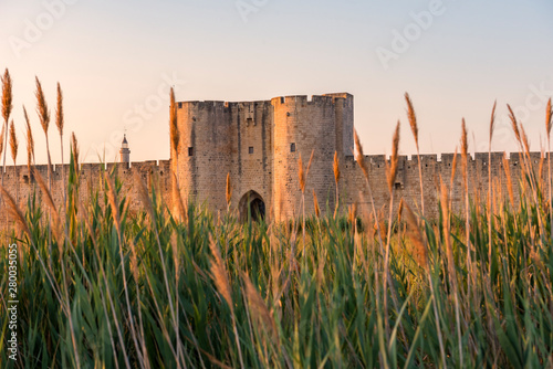 Foto  Summer sunset in Aigues Mortes in the Camargue