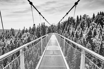 Fototapeta Współczesny Suspension Bridge at town of