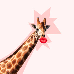 Giraffe's head with shadow against it kissing by the big red female mouth. Ne...