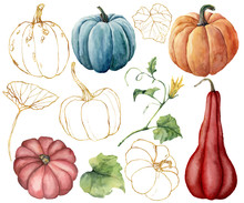 Watercolor Set With Golden Pumpkins And Leaves. Hand Painted Red, Blue, Orange And Stripe Gourds Isolated On White Background. Autumn Festival. Botanical Illustration For Design, Print Or Background.