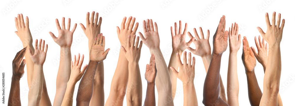 Fototapety, obrazy: African-American man extending hand for shake on white background, closeup