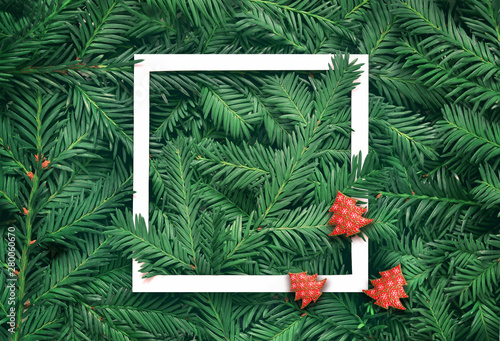 Creative background of pine branch with white paper frame. New Year and Merry Christmas Concept.