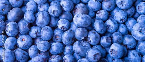 Poster Macro photographie Many blueberry berries on a flat surface, top view, close-up. Background of berries, blueberries macro