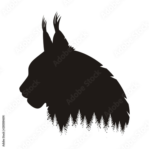 Photo Wild Lynx Head Silhouette