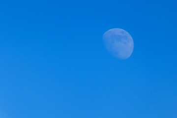 Moon in the blue sky, there is copy space