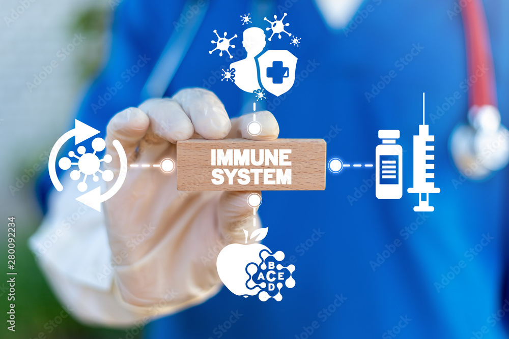 Fototapeta Doctor hold wooden block with immune system words. Immune human system health concept. Immunity medical cure.