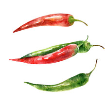 Watercolor Hot Green And Red Pepper