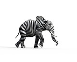 Elephant be different