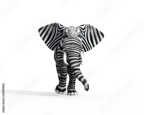 Fototapeta Elephant be different obraz