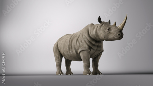 Rhino in studio Canvas Print