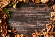 Frame Border With Autumn Fall Leaves On A Dark Wooden Table
