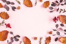 Autumn Composition. Frame Made Of Dried Leaves, Flowers On Pink Background. Autumn, Fall Concept. Flat Lay, Top View, Copy Space