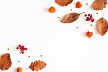 Autumn Composition. Dried Leav...