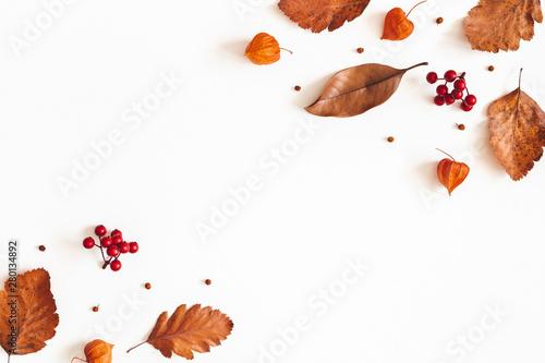 Jesienna kompozycja. Suszone liście, kwiaty, jagody jarzębiny na białym tle. Jesień, jesień, koncepcja Święto Dziękczynienia. Leżał płasko, widok z góry, miejsce