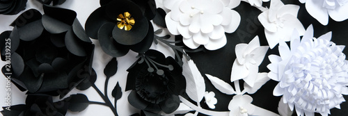 obraz dibond Black paper flowers on white background. Cut from paper.