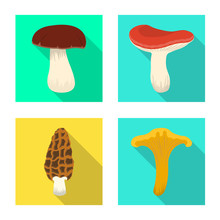 Isolated Object Of Raw And Summer Symbol. Collection Of Raw And Ingredient Vector Icon For Stock.