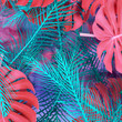 Creative fluorescent color layout made of tropical leaves with white square and fogs.
