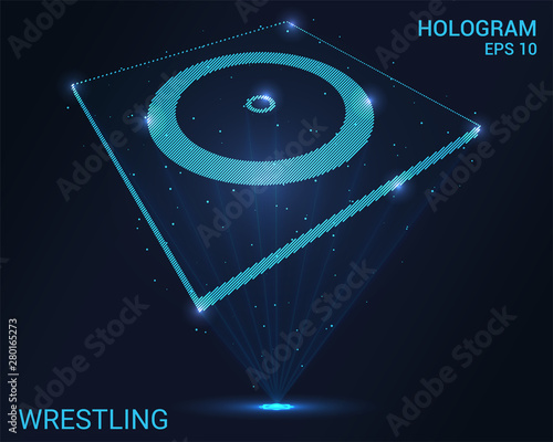 Photo  Hologram wrestling