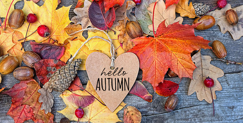 hello autumn. Autumn Background with heart greeting card and colourful leaves over wooden board. Thanksgiving wooden table decorated bright autumn leaves. Autumn season, fall backdrop