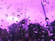 canvas print picture - Rain drop on wihdow car in purple light. Water Splash on glass. Rainy season, close up