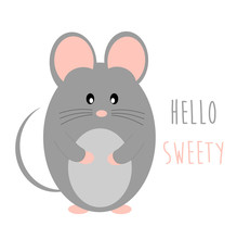 Baby Mouse Animal Cute Vector ...