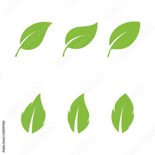 Fototapeta Logos of green Tree leaf ecology nature element obraz na płótnie